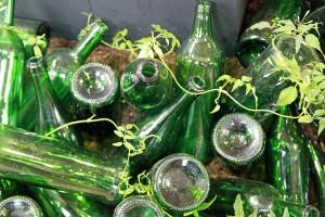 bottles-659150_640